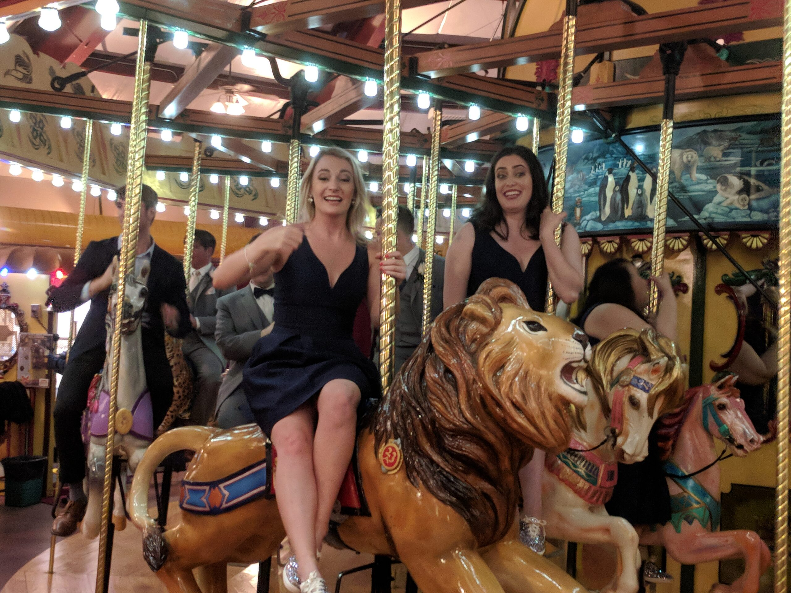 Bridal party on carousel at a Beardsley Zoo Wedding