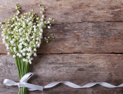 Brunch Weddings at The Penfield Pavilion, Fairfield